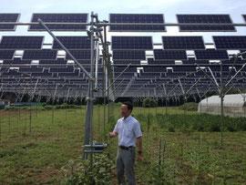 茨城県つくば市の「西高野ソーラーシェアリング発電所」