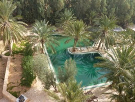 Pool Camp Yadis Ksar Ghilane