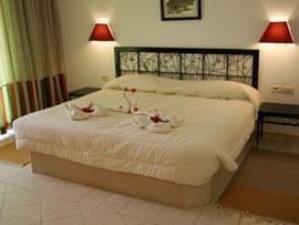 Room Miramar Petit Palais