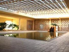 Pool Sahara Douz