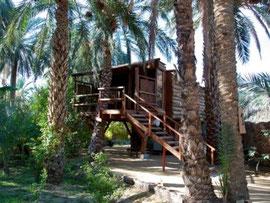 Hotel Diar Abou Habibi