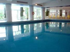 Pool Riadh Palms