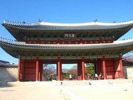 韓国の移転価格税制