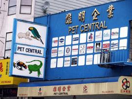 Petshop – Chinatown von San Francisco