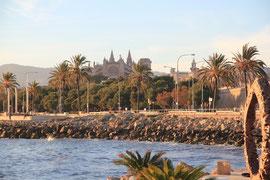 Kathedrale - Palma de Mallorca