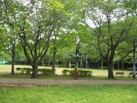 広場にトーテムポールがたくさんある公園でした。