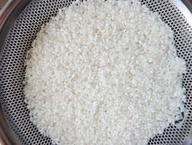 もち米は白く、一方うるち米は透明感があるので一眼で判別がつきます