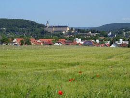 Blick auf Weißenfels