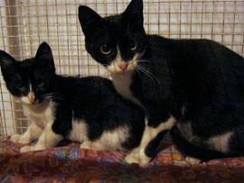 Sofia col piccolino