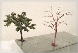 gedrehter Baumrohling und erster Baum