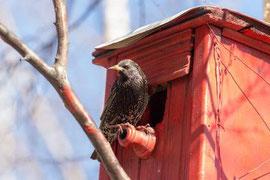 Wildtierbeobachtung & Haustierbedarf