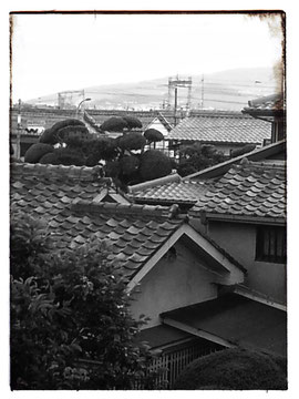 roofs over Ikeda