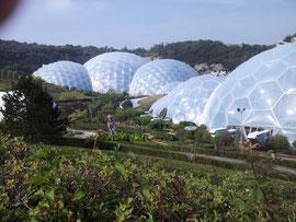 Anlage des Eden Projekts
