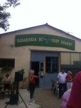 le vert Galant