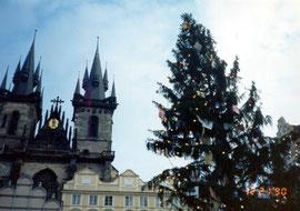 プラハ旧市街に立てられた大きなクリスマス・ツリーとティーン教会