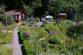 NABU Naturgarten - Foto: Oliver Kühn