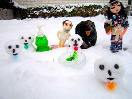 函館の初積雪2011