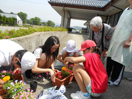さくら荘に花植えをする児童