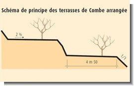Culture: principe des terrasses
