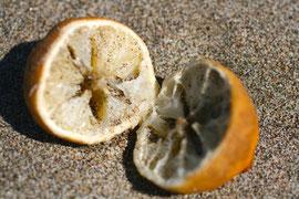 Kein Zitronenhandel