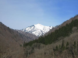 ▲大朝日岳以外には雪がない…
