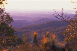 Sunset Over Bunya Mountains, Southern Queensland