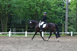 Elli und Räuber 2012