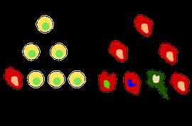 Anklicken um zu vergrößern; Quelle: www.wikipedia.org; Besitzer: Garak76, Suhadi Jorhaa'ir
