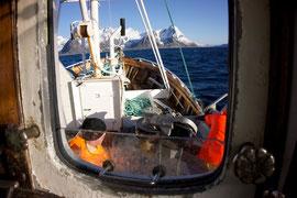 Fischerboot vor der Küste auf Dorschfang. © Robert Hansen, Hamnøya, Apriil 2014