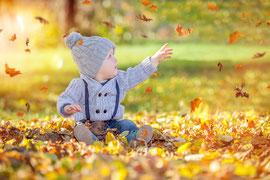 Kategorie: Herbst