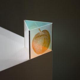 Apple . 11,2 x 11,2 x 16 cm
