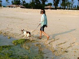 愛犬ドララとビーチで