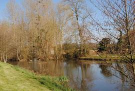 Rivière d'Asvins