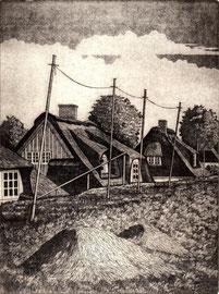 Neuenfeldsdeich  (15x20)