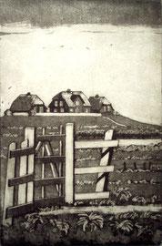 Hallig Hooge (Gatter)  (10x15)