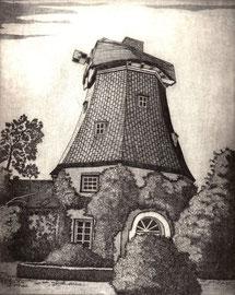 Windmühle Helga  (20x25)