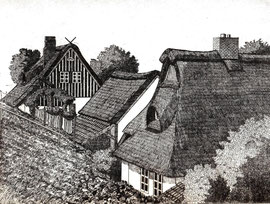 Altenfeldsdeich  (15x20)