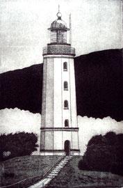 Dornbusch  (10x15)