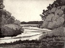 vörn Diek  (15x20)