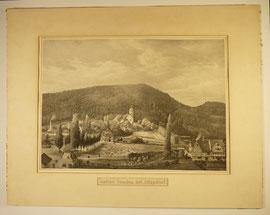 Alter Punktstich,  Saline Sooden bei Allendorf, 53cm x 42cm  - verkauft-