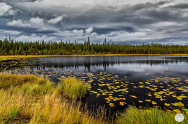 "Bild: lake at Dalton Highway, Alaska on the first 100 miles, ""lakeside stop""; www.2u-pictureworld.de"