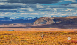 "Bild: Brooks Range in the Arctic National Wildlife Refuge, Alaska, ""first glimpse of Brooks Range""; www.2u-pictureworld.de"
