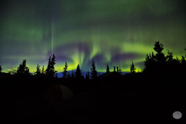 "Bild: aurora borealis in the Denali Nationalpark at the end of August, Alaska, ""ghostly sleepness night""; www.2u-pictureworld.de"