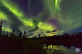 "Bild: aurora nighat at a lake at Denali Highway, Alaska, ""light show""; www.2u-pictureworld.de"