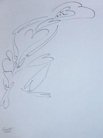Herzflucht, Tusche auf Papier, 24x32cm, 25€