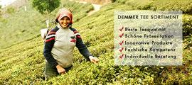 Über 40 offene Teesorten