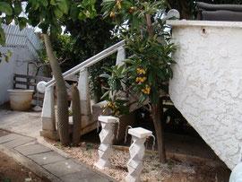 jardinet devant