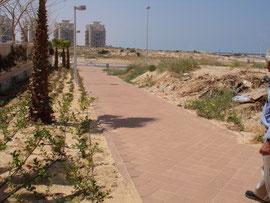 Chemin vers la plage:300m