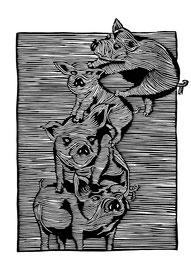(Massen-)Tierhaltung
