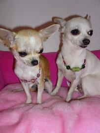 Lotte und Ronja